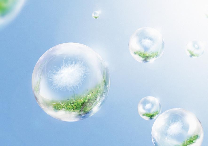 天然环保 法国纯植物萃取技术