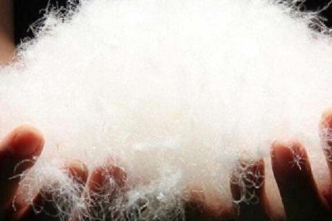 白鸭绒羽绒服正确的洗涤方法